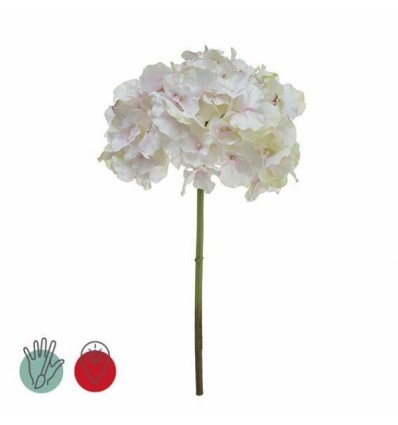 Rama Hydrangea blanca